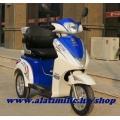Elektro Tricikl na baterije AMTOL1000p