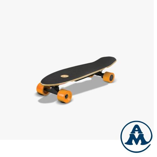 elektro skateboard longboard 2x100w 6kg. Black Bedroom Furniture Sets. Home Design Ideas