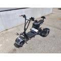 Električni Tricikl 800W Li-ion 48V 12Ah