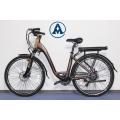 Električni bicikl na baterije AMLANGTU