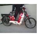 Elektro Skuter bicikl na Baterije Akumulator 48V